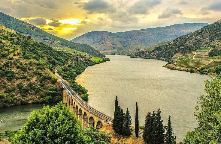 Douro vineyards near Pinhao, Portugal - Douro Valley