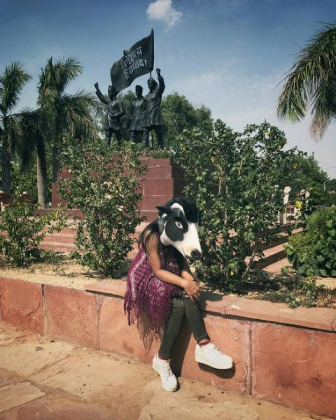 Sujatro Ghosh cow mask photos