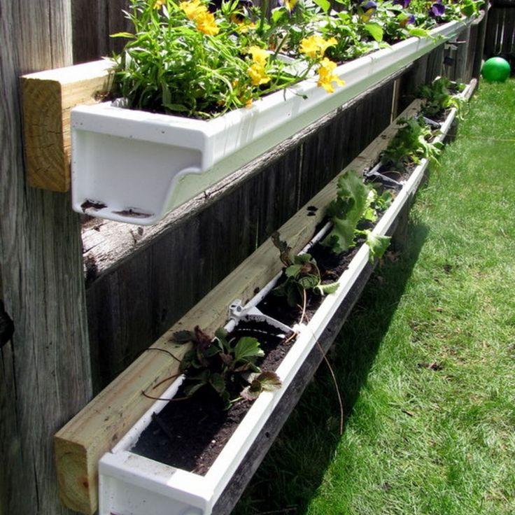 DIY Gutter Garden Diy gutters, Gutter garden, Vertical