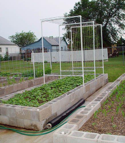 20 Brilliant Raised Garden Bed Ideas You Can Make In A: Best 25+ Bean Trellis Ideas On Pinterest