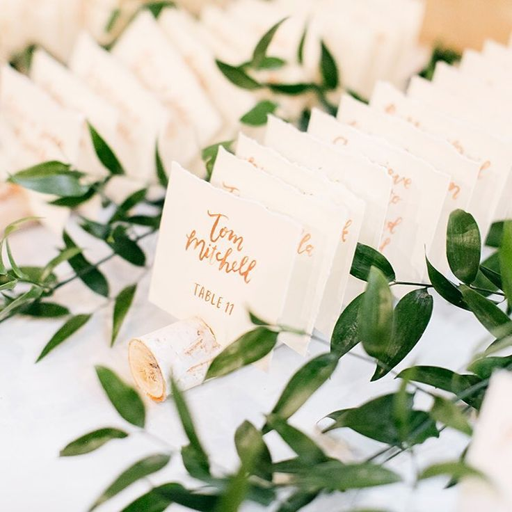 """""""How beautiful is this escort card table for Christine & Dan's wedding at @john_james_audubon_center !?! The handwritten escort cards by @hellowrennbird were held in place by notches in birch tree branches and the table was decorated with loose greenery by @mary_agardenparty ✨""""  escort cards handwritten by hello, bird. //  by Emily Wren Photography"""