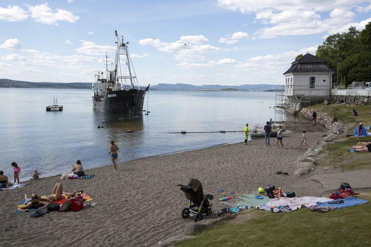 https://flic.kr/p/J8JkaS   Påfyll av sand på Oslos strender   Hvervenbukta