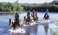 Mesa Arizona Attractions, Things to Do, Activities, Sightseeing & Historic Tours.