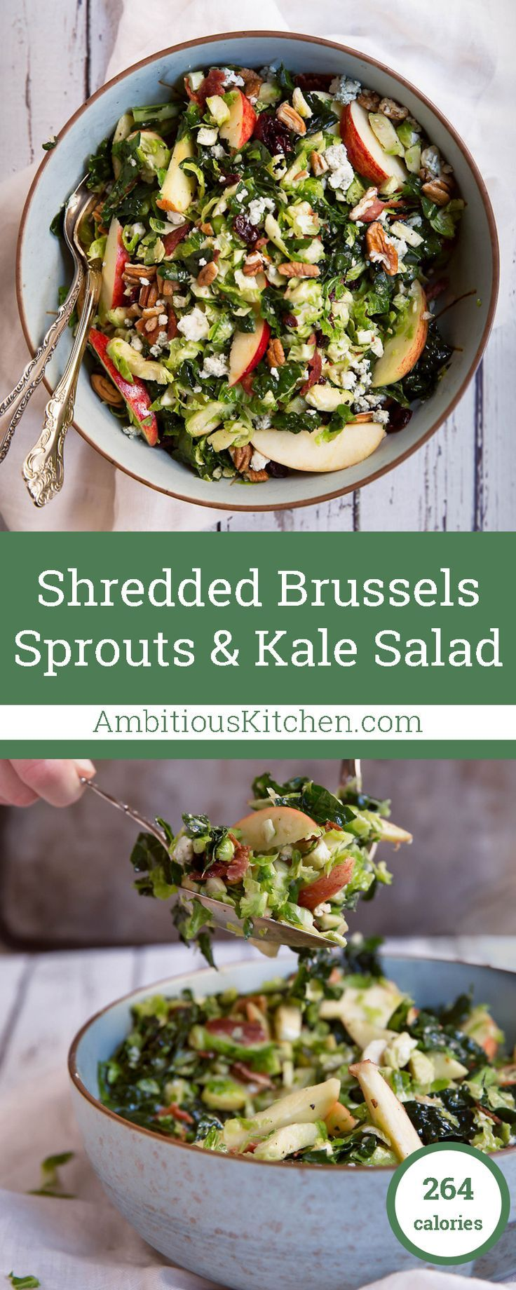 A delicious autumn inspired kale and brussels sprouts salad packed with fresh apple slices, dried cranberries, pecans and gorgonzola.