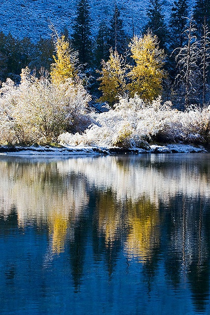 Inyo National Forest, California