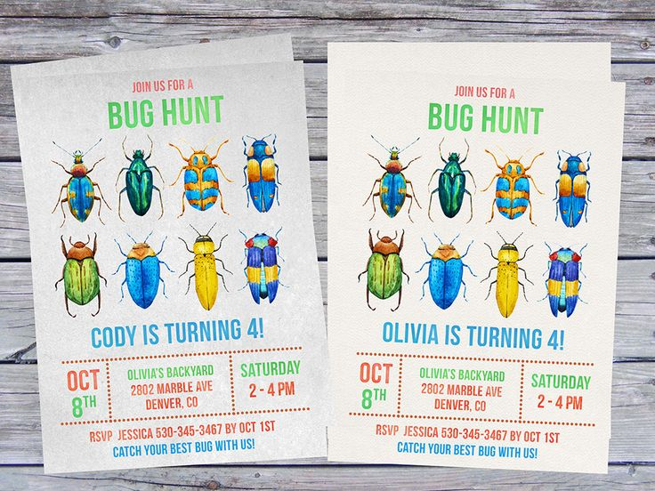 34 best Bug party images – Insect Birthday Invitations
