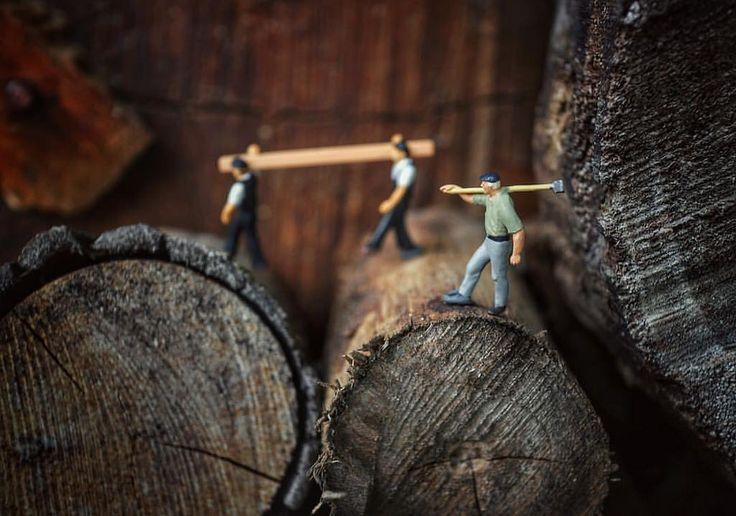 katakan padaku hai tukang kayu bagaimana caramu menebang kayu  #imfc87_kerjakerasbagaikuda  #imfc87  #kmfi
