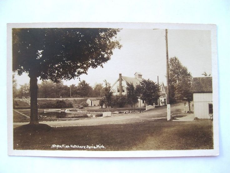 C1920 real photo postcard state fish hatchery paris for Fish hatchery michigan