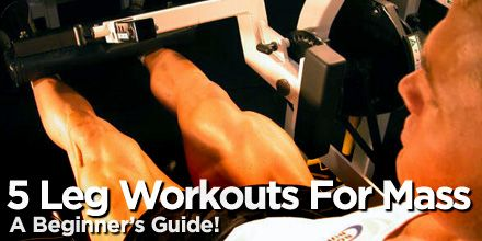 super informative - muscle group breakdown w/ specific exercises.  LIKE IT!