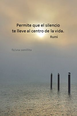 Permite que el silencio te lleve al centro de tu vida. RUMI