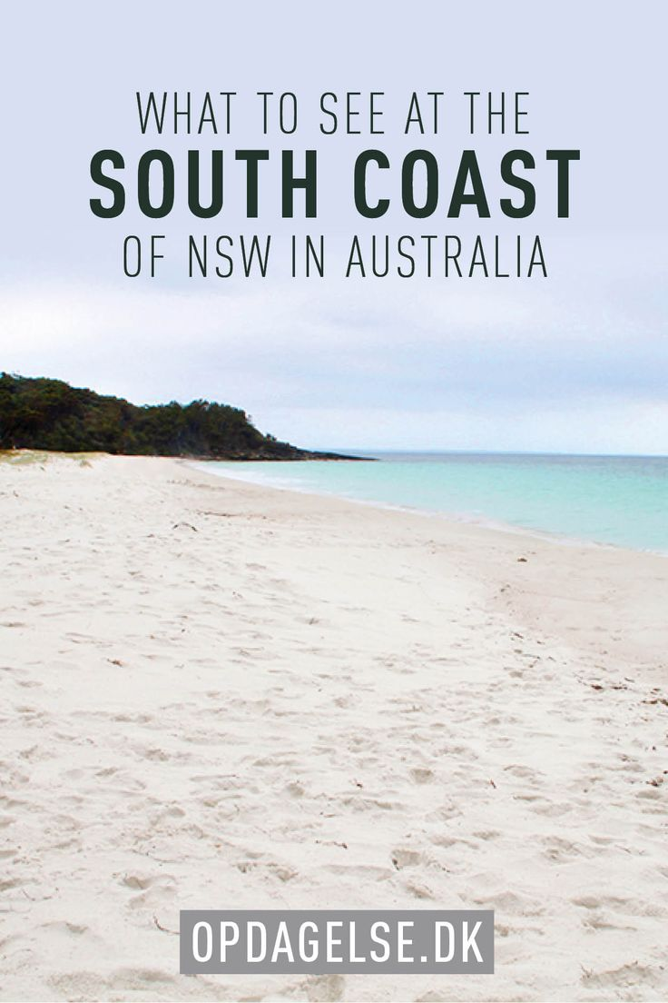What to see on the south coast of NSW in Australia - roadtrip in Australia