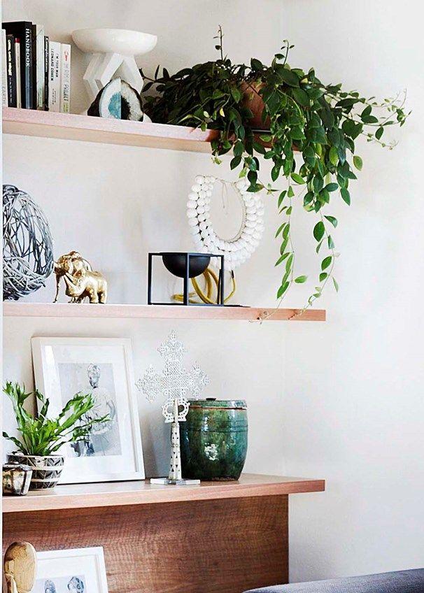 5 winning ways with indoor plants