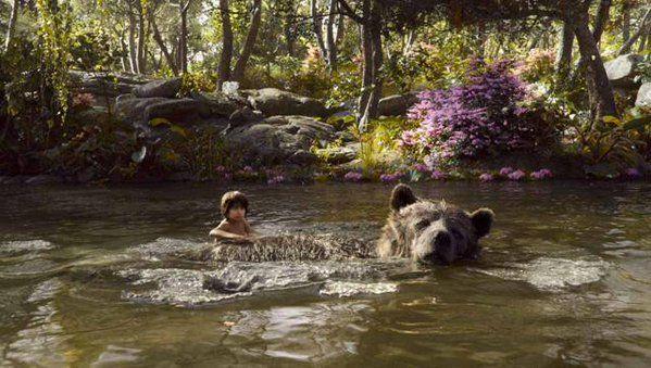 Bollywood, Jungle Book, Hindi Movie, Bollywood Latest