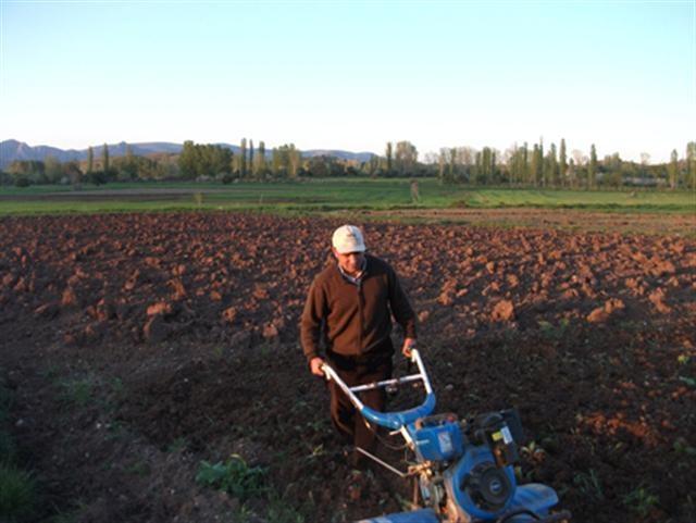 Yozgat'ın Aydıncık ilçesinde alternatif ürün kapsamında soya fasulyesinin deneme ekimi yapıldı. İstenilen verim alındığı takdirde ilçe çiftçisi soya fasulyesi üretecek.    Kaynak: http://www.kumbetova.com/Konu-Aydincik-ta-Soya-Fasulyesi-Uretilecek.html