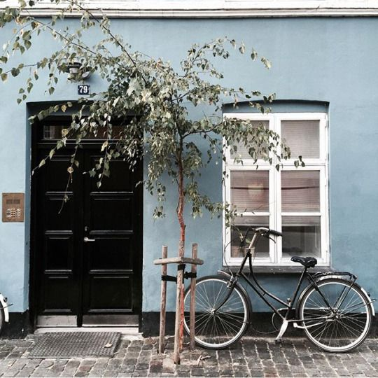 Black doors with blue walls