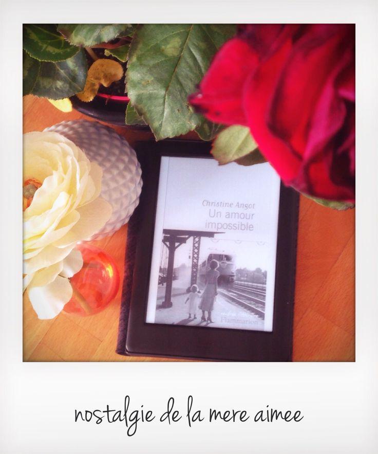 Chronique du roman Un amour impossible, de Christine Angot. Une histoire d'amour filiale empreinte de nostalgie. Le commencement de Christine Angot.