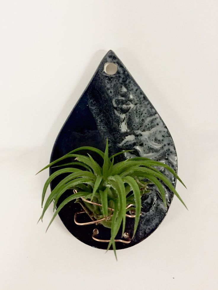 17 Best Images About Wooden Toys On Pinterest Air Plant