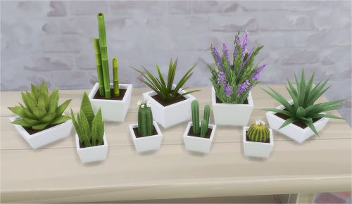 Kiki Plants I  by Veranka via tumblr I Maxis Match I Sims 4