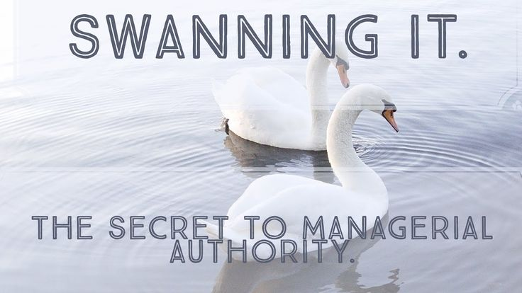 Video 23: Swanning It.  The Secret to Managerial Authority | How To Star...