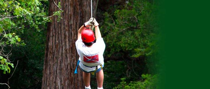 Photo By Cypress Valley Canopy Tours
