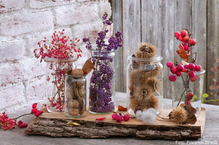 Verschieden große Weckgläser auf einem Holzbrett, gefüllt mit Beerenfruchtzweigen, Walnüssen und Kastanien