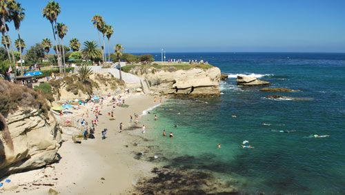 Snorkeling In La Jolla Cove  San Diego  Recommended That