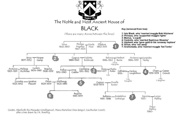 The Noble and Most Ancient House of Black