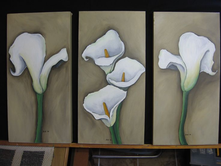 Arum Lilies (together)