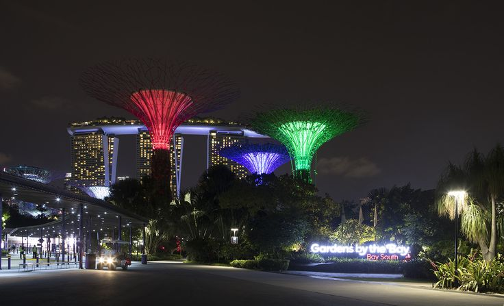 Gardens by the Bay at night. - Gardens by the Bay, Singapore.