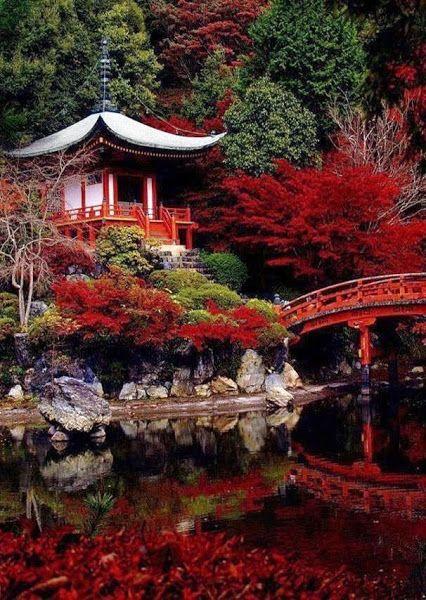 Kyoto, Japan #photography