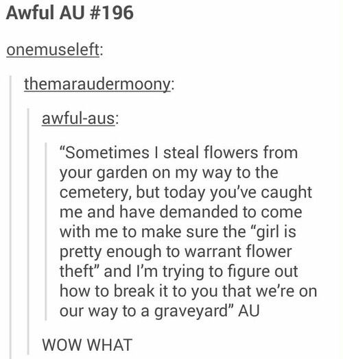 Maybe do it differently in Matt's pov, where he is the flower thief and Mello caught him
