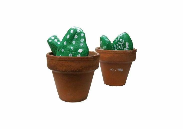 Dropbox - cactus.jpg