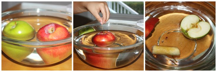 Apple Science Activity How An Apple Grows #PlayfulPreschool    Hands-On Playful Preschool Fall Learning I am so excited to be a part of a great team of educators and moms joining together to bring all of you amazing playful preschool activities each week. Each week will have a fun theme ...