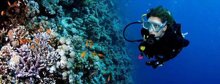 #Diving a #Scalea #sport #estate