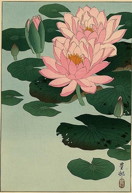 """Flowering Water Lilies"" by Ohara Koson, c.1930"