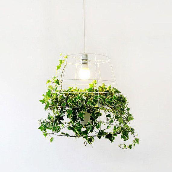 Hanging plant cage pendant light di TudoandCo su Etsy, $180.00
