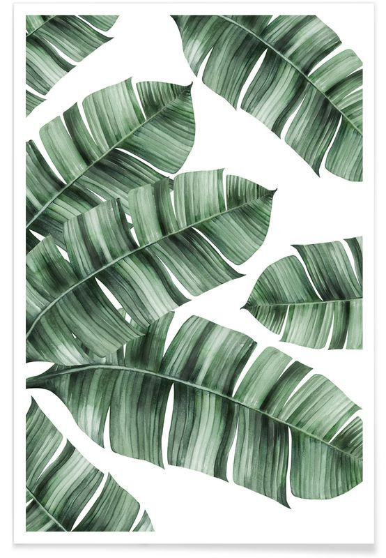 tropical no 8 als premium poster von typealive juniqe. Black Bedroom Furniture Sets. Home Design Ideas