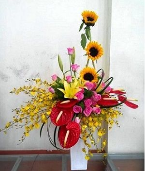 Sunflowers for Wishes The product is served in only big cities of Vietnam such as: Ho Chi Minh, Da Nang, Ha Noi, Phan Thiet, Nha Trang, Hue, Vung Tau, Hai Phong, Binh Duong, Dong Nai, Long An, Vinh, ….