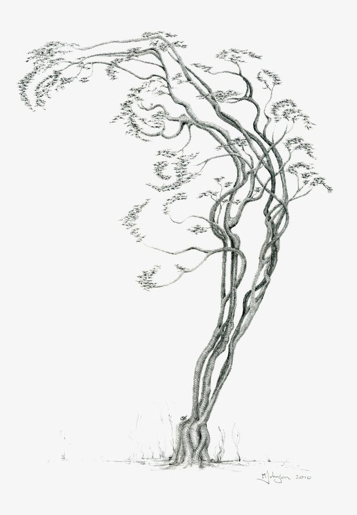 Tree Dancer 03 13x19 by ~kramus on deviantART - Earth and Dancing - a twofur