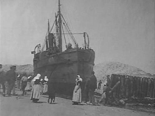 "English cargo vessel ""Hobgoblin"" of the Brito-France Shipping Co Ltd in Blyth (master J.R. Reid), stranded on the beach between Westkapelle and Domburg, Walcheren island, province of Zeeland, The Netherlands on May 19, 1922. The English vice consul Pieter de Bruyne (1884-1981) visited the crew in the hospital in Vlissingen (Flushing). [the original record after the link gives an incorrect vessel's name]"