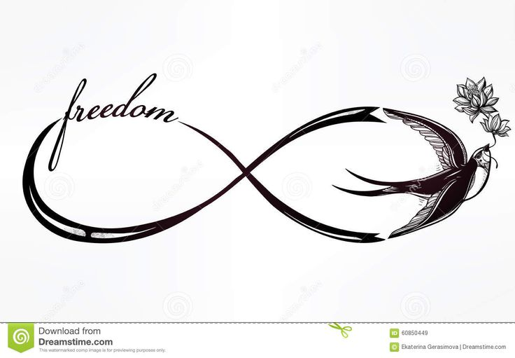 Symbole D'infini Avec L'illustration D'hirondelle Illustration Stock - Image…