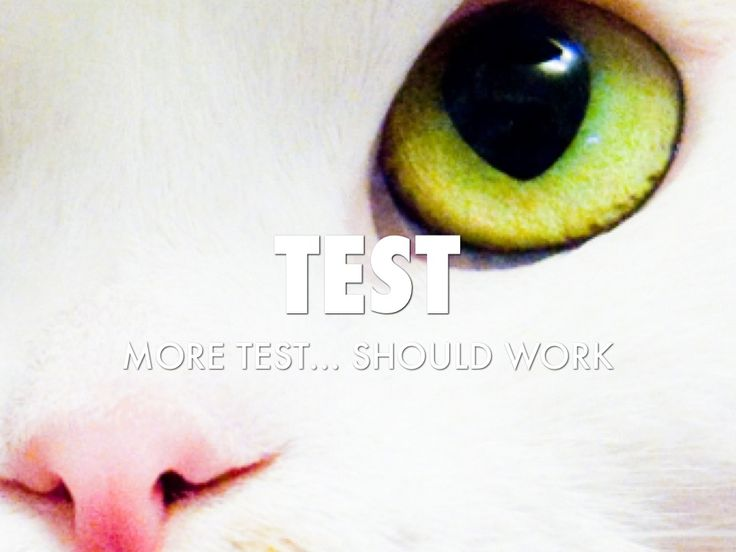 "I created ""Test 3"" with Haiku Deck."
