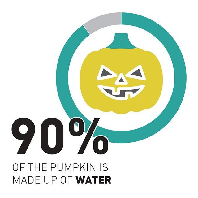 And that makes them low in calorie. They also have more fiber than kale, more potassium than bananas and are full of heart-healthy magnesium and iron. Oh, and every single part of them is edible - you can eat the skin, leaves, flowers, pulp, seeds and stem! #happyhalloween 🎃 . . #pumpkin #nutrition #food #bodybuildingfood #health #infographic #fitsual #flat #flatdesign #vector #fungraph #fitness #fitlife #vegetables #veggies #water