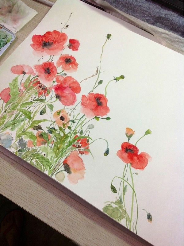 Poppies I love watercolor - its such an elegant medium. <3 More