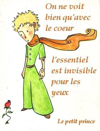 French Class memoirs :) Le Petit Prince