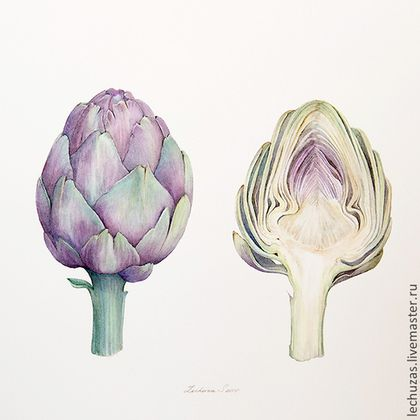 Artichokes. Traditional art ( watercolor). Prof. paper: Arches 300 g/м2 (cotton). Svetlana Markina (LechuzaS) Size: 24cm*24cm