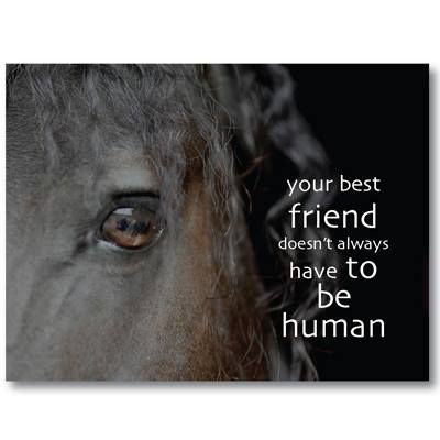 Your best friend doesn't always have to be human - this is ...