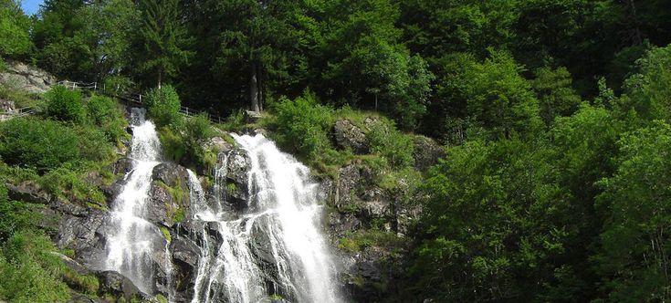 Das dürft ihr bei eurem nächsten Ausflug in den Schwarzwald auf keinen Fall vergessen!  Der Todtnauer Wasserfall ist ein echter Tipp wenn es ums Wander, Erholen und Genißen geht.