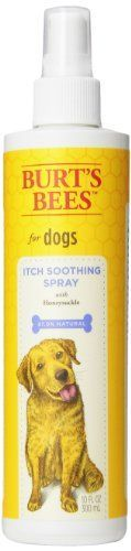 Burts Bee Itch Soothing Spray, 10-Ounce * You can get additional details at the image link.
