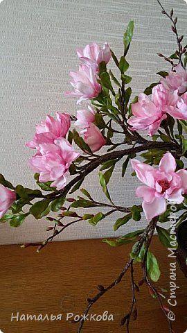 мой первый бонсай. фото 8   Glass vase, Bonsai, Vase